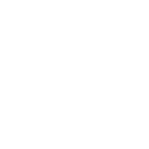 PRO-FEST MEDIA